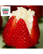 Donut King - Nicotine Salts – 10ml – 20mg - Strawberry Cream